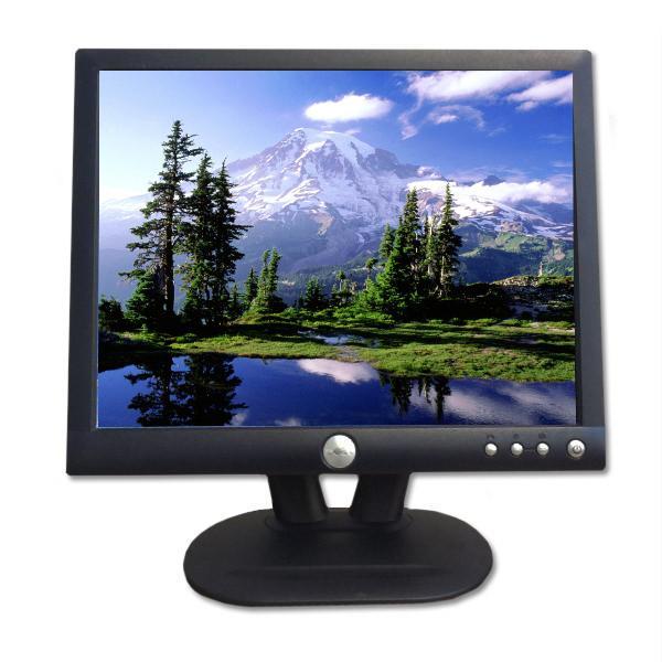 DELL Ecran plat LCD 15'' E152FPG