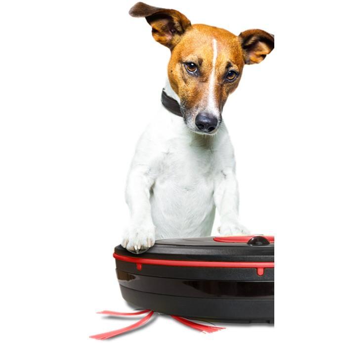 Aspirateur E Zicom Tornade Pets