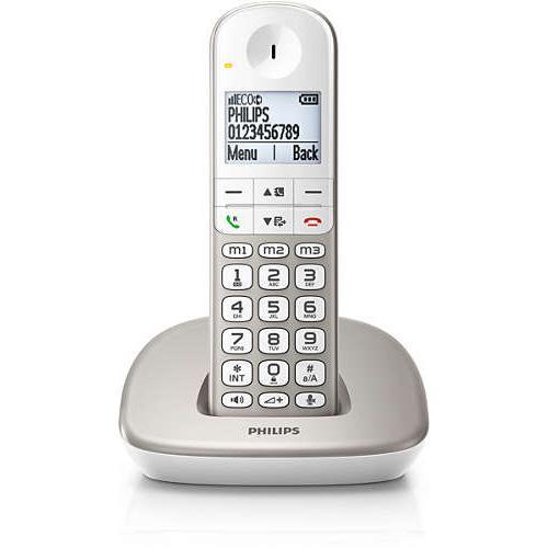 Téléphone fixe sans fil Philips XL4901S/FR