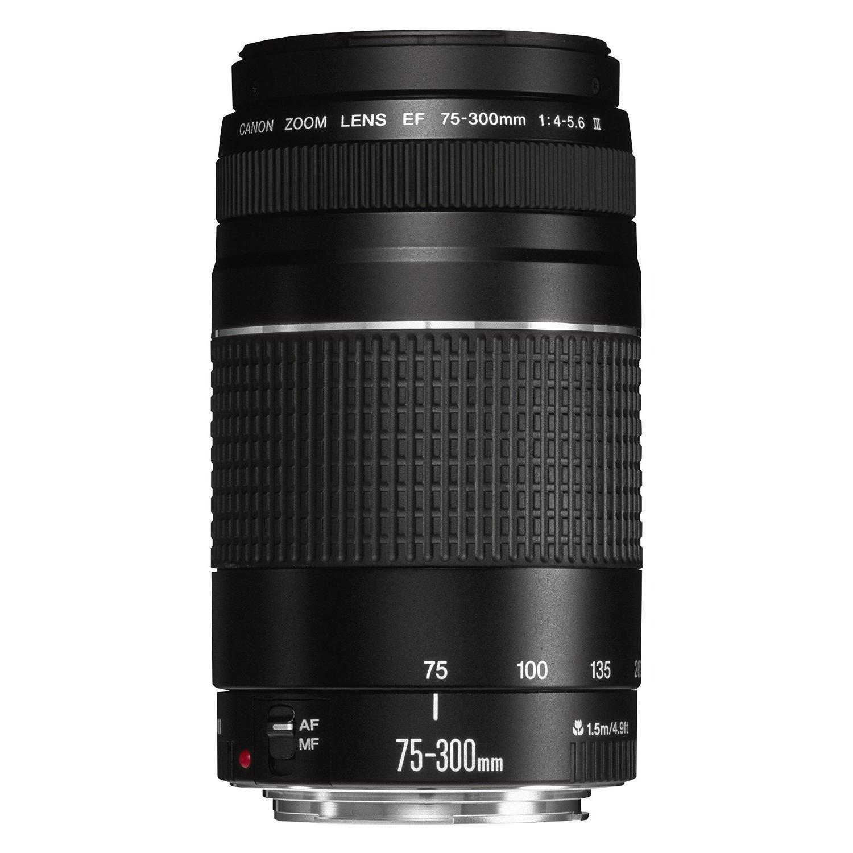 Canon Objectif EF 75-300mm f/4.0-5.6 III
