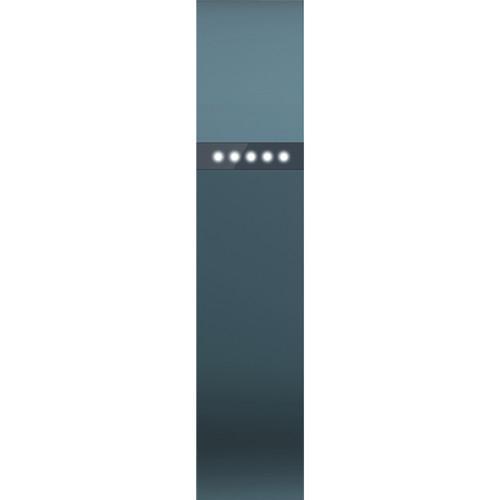 Montre cardio FitBit Flex - Ardoise