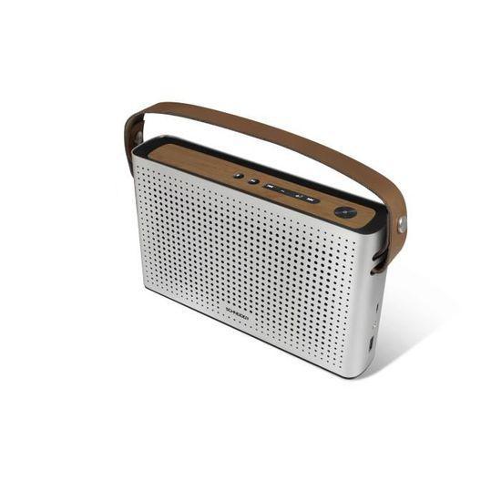Enceinte Bluetooth Schneider SC550SPK - Gris