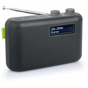 Muse M-108 DB Radio