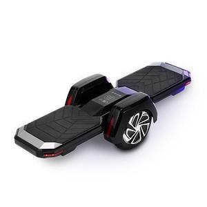 Elektrisches Skateboard Voltech Two Wheels