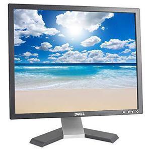 Beeldscherm 19'' LCD SXGA Dell E196FPb