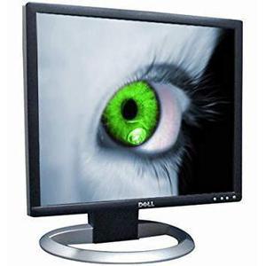 "Écran 19"" LCD SXGA Dell UltraSharp 1905FP"