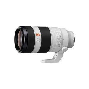Objectif Sony E 100-400 mm f/4.5-5.6