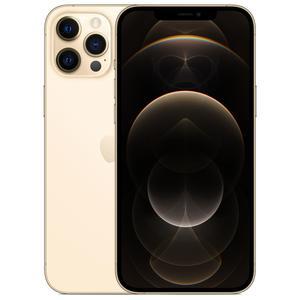 iPhone 12 Pro Max 256 Gb - Gold - Ohne Vertrag