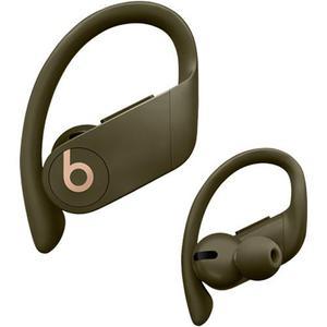Beats By Dr. Dre Powerbeats Pro Oordopjes - In-Ear Bluetooth